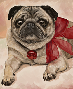 Funny Pug Digital Painting